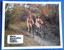 """Erotik-Film """"Wenn Die Prallen Möpse Hüpfen..."""" (nude - Sexy Women - Nackt) # Original Altes Kinoaushangfoto # [19-3684] - Fotos"""