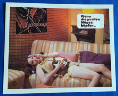 """Erotik-Film """"Wenn Die Prallen Möpse Hüpfen..."""" (sexy Girl / Femme Erotique) # Original Altes Kinoaushangfoto # [19-3686] - Fotos"""