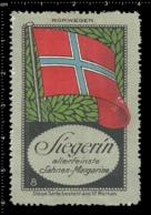 Old German Poster Stamp Cinderella Vignette Erinoffilo Reklamemarke Flag Flagge Norway Norwegen. - Flaggen