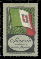 Old German Poster Stamp Cinderella Vignette Erinoffilo Reklamemarke Flag Flagge Italy Italien. - Flaggen
