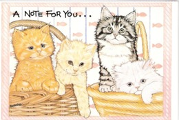4 Chatons - Kitten,cats -kleine Katzen - Poesjes In Mand -gatto - Katten