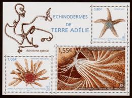 """TAAF  2018  Feuillet  N° F865  """" Echinodermes De Terre Adélie """"  Neuf** - Blocs-feuillets"""