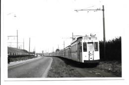 Borgerhout - Tram.(Foto 14 X 9 Cm) - Antwerpen