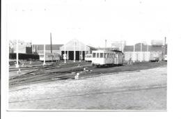 Turnhout - Stelplaats Met Trams. (Foto 13,5 X 8,5 Cm) - Turnhout