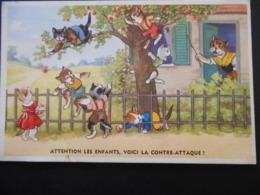 """Chatons Habillés Se Sauvant D'une Maison - """"Attention Les Enfants, Voici La Contre-attaque !"""" - Série 54201/10 - Cats"""