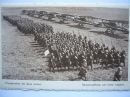Avion / Airplane / FORCE AERIENNE BELGE / Fairey Fox - 1946-....: Ere Moderne