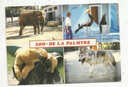 Cp, 17, Les Mathes ,zoo De La Palmyre ,éléphant ,les Otaries,ourse ,ourson ,le Loup , écrite,multi Vues - Les Mathes