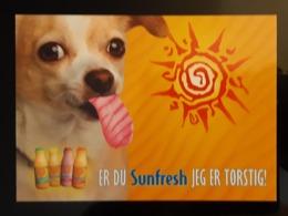Sunfresh Carte Postale - Pubblicitari