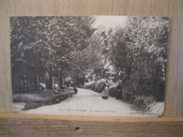 L'ILE Aux MOINES Chemin De La Plage - Ile Aux Moines