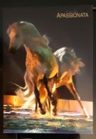 Apassionata Horses Exibition Carte Postale - Pubblicitari