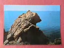 Dep 44 , Cpm Le CROISIC , 3194 , Le Rocher  De L'Ours (135) - Le Croisic