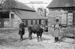 JUMILHAC (Dordogne) - Comme C'est Délicat D'estimer Un Veau ! Non Circulée. TB état. - France