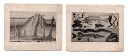 EXPLICATION DU TABLEAU . 2 CHROMOS - Réf. N°23075 - - Colecciones