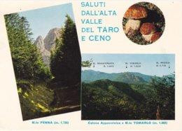 PARMA - Saluti Dall'Alta Valle Del Taro E Ceno - 2 Vedute - Funghi / Fungo / Mushroom / Champignon - 1975 - Parma