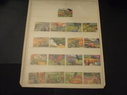 GRENADA - 1999 SAURI 9 + 8 VALORI  - NUOVI(++) - Grenada (1974-...)
