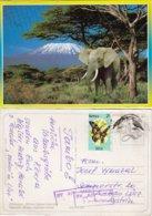 Kenya - Elefant Mit Kilimandscharo - Elefanten
