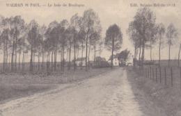 Walhain St Paul, Le Bois De Boulogne, Edit Salmin Mélotte (pk62169) - Walhain