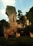 Vibrac Dans Une Ile De La Charente Restes Du Chateau 1974   CPM Ou CPSM - Autres Communes