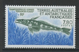 TAAF 1991  N° 161 ** Neuf MNH Superbe C 3.70 € Faune Marine Poissons Champrocephalus Fishes Fauna Animaux - Tierras Australes Y Antárticas Francesas (TAAF)