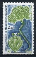 TAAF 1993  N° 175 ** Neuf MNH Superbe C 1,25 € Flore Lyallia Kerguelensis Flora - Tierras Australes Y Antárticas Francesas (TAAF)