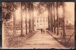 Grandglise - Le Château - LOOK!!!! - Beloeil