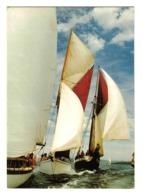 Vieux Gréements En Régate N°1 4220 Voiliers Et Leurs équipages - Voile