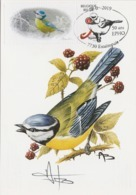 06. BUZIN.MESANGE BLEUE - 1985-.. Oiseaux (Buzin)