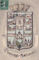 Montargis : Souvenir De Montargis - Montargis