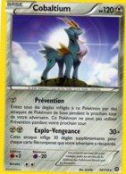 Carte Pokemon 74/114 Cobaltium 120pv 2016 - Pokemon