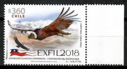 Chile 2018 / Birds Condor MNH Aves Vögel Oiseaux / Cu14331  4-29 - Pájaros