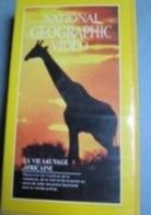2 Cassettes V H S Du National Geographic :  La Vie Sauvage Africaine, 1980 & Le Gorille, 1981. - Documentaires