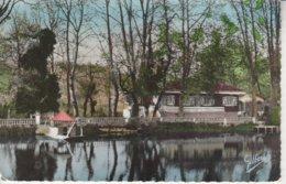 16 - COGNAC - Bords De Charente à Robinson - Cognac