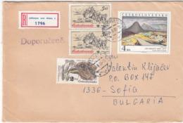 CSSR-65/1983 - 16.00 Kcs. - Vogel, Painting, Postkutsche, R-letter - Tchécoslovaquie