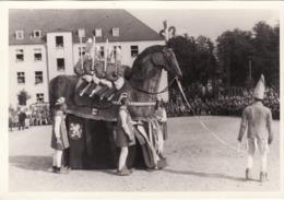 CARTE PHOTO PRISONNIER DE GUERRE OFLAG IIA CORTEGE CHEVAL BAYARD - Guerre 1939-45