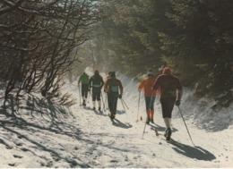 SKI DE FOND VOSGES JURA ? - Sports D'hiver