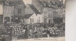 AUXONNE   LE MARCHE AUX CHOUX FLEURS - Auxonne