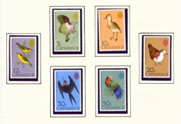 CAYMAN ISLANDS - 1975 Birds Set Unmounted/Never Hinged Mint - Cayman Islands