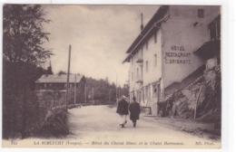 Vosges - La Schlucht - Hôtel Du Cheval Blanc Et Le Chalet Hartmann - Other Municipalities