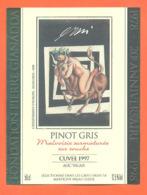 étiquette De Vin Suisse Pinot Gris Cuvée 1997 20eme Anniversaire Fondation Pierre Gianadda à Martigny - 50 Cl - Vin De Pays D'Oc