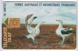 TAAF 4 - 50 U Parade Nuptiale D'albatros - Voir Scans - TAAF - Franse Zuidpoolgewesten