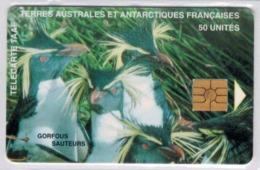 TAAF 8 - 50 U Gorfous Sauteurs - Voir Scans - TAAF - Franse Zuidpoolgewesten