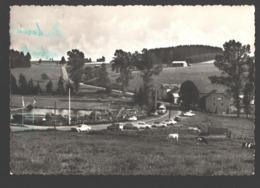 Gouvy - Lac De Cherapont - Camping 1er Classe - Gouvy