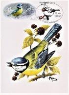 "2 MK Kaarten ""Pimpelmees"" Zegel Links + Rechts - 1985-.. Oiseaux (Buzin)"