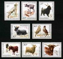 ALBANIE - ANIMAUX De La FERME - YT 1077 à 1084 * - SERIE COMPLETE 8 TIMBRES NEUFS * - Farm