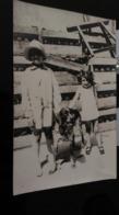 CP -  CARTE PHOTO - Deux Jeunes Filles Et Leur Chien - Portraits