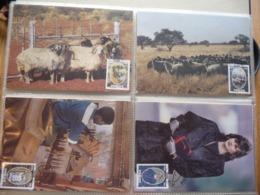 (B2) South West Africa SWA - 1986 - Karakul Wool Industry (Swakara) - 4 Maximum / Maxi Cards - South West Africa (1923-1990)