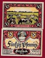 Allemagne 1 Notgeld De 50 Pfenning  Stadt Friesack (RARE)   Dans L 'état N° 4883 - [ 3] 1918-1933 : Repubblica  Di Weimar