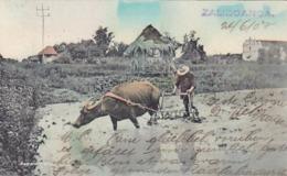 Zamboanga - Philippinen - 1907          (A-119-190315) - Philippinen