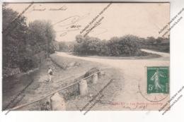 CPA CHESLEY (10) - Les Bords Du Landion (envoyée à Eugénie Carré De Villiers Vineux 89) - Otros Municipios