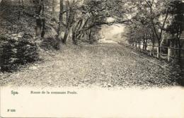 SPA - Route De La Commune Poule - Carte Précurseur N'ayant Pas Circulé - Edit. C. Debrus, Spa - Spa